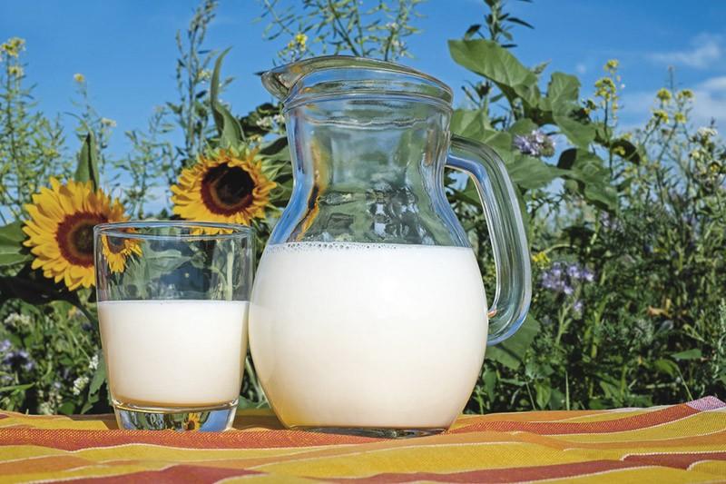 Milch nach Weisheitszahn OP Milchprodukte